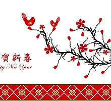 Chinese New Year by Ingvar Bjork Photography