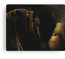 Friends of the Chihuahaun Desert Canvas Print