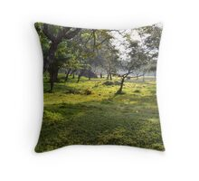 After the floods in Sri Lanka Throw Pillow