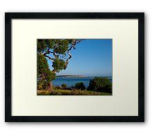 Eucalyptus, Inverloch, Victoria. Framed Print