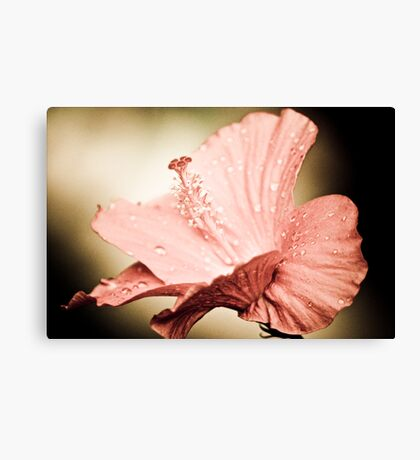 Dance with me? ; Got 2 Featured Works Canvas Print
