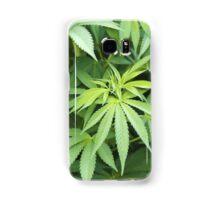 POT LEAVES Samsung Galaxy Case/Skin