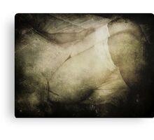 Shades of Night Canvas Print