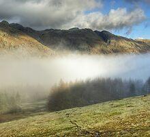 Mist In The Langdale Valley by Jamie  Green