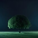 Tree of life by Mikko Lagerstedt
