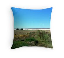 amazing Salt Lake Throw Pillow