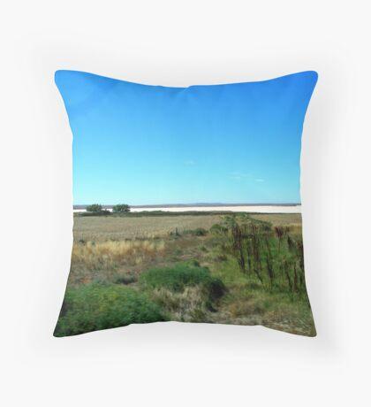 amazing Salt Lake Throw Pillow