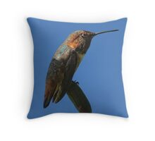 Down and Out by Badinov Throw Pillow