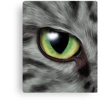 Cat Eye Canvas Print