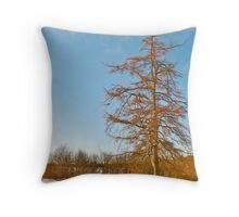 In the Golden Glow of Morning Throw Pillow