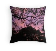 """""""A Touch of Pink- Northford CT"""" Throw Pillow"""