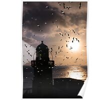 lighthouse flock Poster