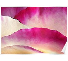 Curves of Rose Petals: Abstract 2 Poster