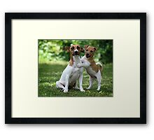 Something to make you smile  Framed Print
