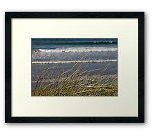 long dune grass Framed Print