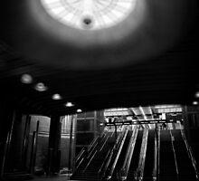 Dans le faisceau by Peter Denniston
