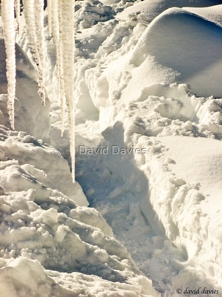 Icicles and Trenches by David Davies