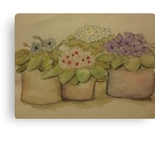 Four African Violets Canvas Print