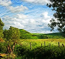 Silbury Hill, Avebury, Wiltshire, UK by buttonpresser