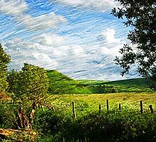 Silbury Hill, Avebury, Wiltshire, UK by buttonpresser