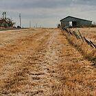 Rural Ellis County, Texas by Susan Russell