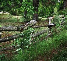 Country Fence by RickDavis