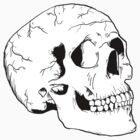 White Skull by MrMasai