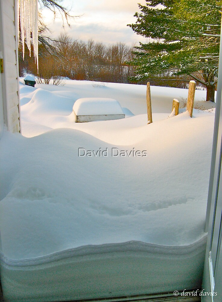 So I Opened the Door and.......... by David Davies