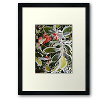 Holly Ice Tree Framed Print
