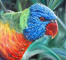 RAINBOW LORIKEET by Wayne Dowsent
