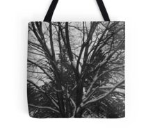 Snow Covered Tree Limbs Tote Bag