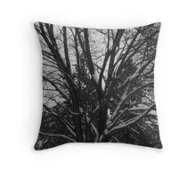 Snow Covered Tree Limbs Throw Pillow