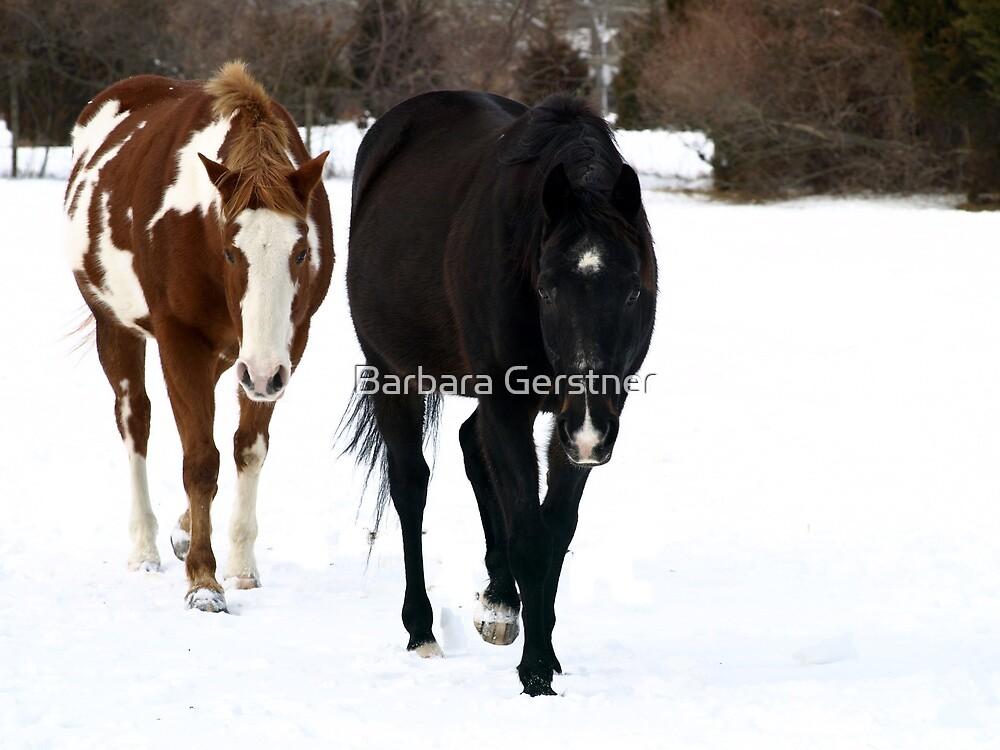Best Friends by Barbara Gerstner