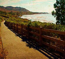 Shell Beach fence overlooking Pirates Cove. by DigitalTulip