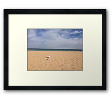 Seagull Serenity Framed Print