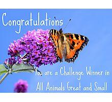 Banner Challenge Photographic Print