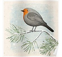 a winter robin Poster
