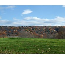 green fall cover crop Photographic Print