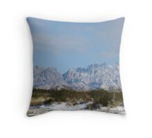 And then there was SNOW and COLD Throw Pillow