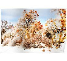 Splendor in the Cold Poster