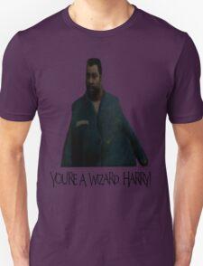 You're a Wizard, Harry! T-Shirt
