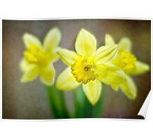 Spring Chorus Poster