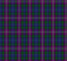 00334 South Lanarkshire District Tartan by Detnecs2013