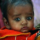 indian child by picketty