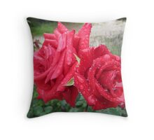 'RAINDROPS ON ROSES!' Red Cardinal standard. Throw Pillow