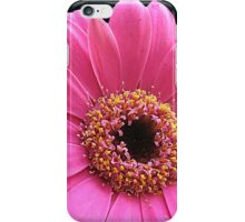 Stunning Pink Gerbera Daisy on Black Background iPhone Case/Skin