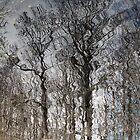 Wavy Reflections by RebeccaBlackman