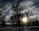 Winter Dusk by Kayleigh Walmsley