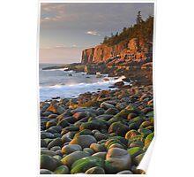 Otter Cliffs At Sunrise  Poster