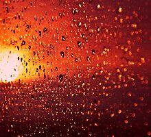 Fiery Tears by Denise Abé